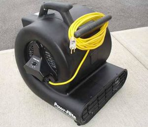 carpet blower 300x258